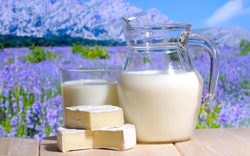 Французи влаштували на Черкащині День молока