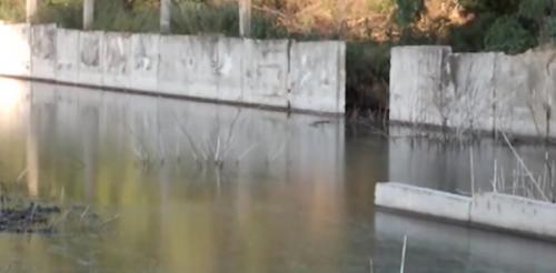 На Чорнобаївщині через велике підприємство забруднюється водосховище
