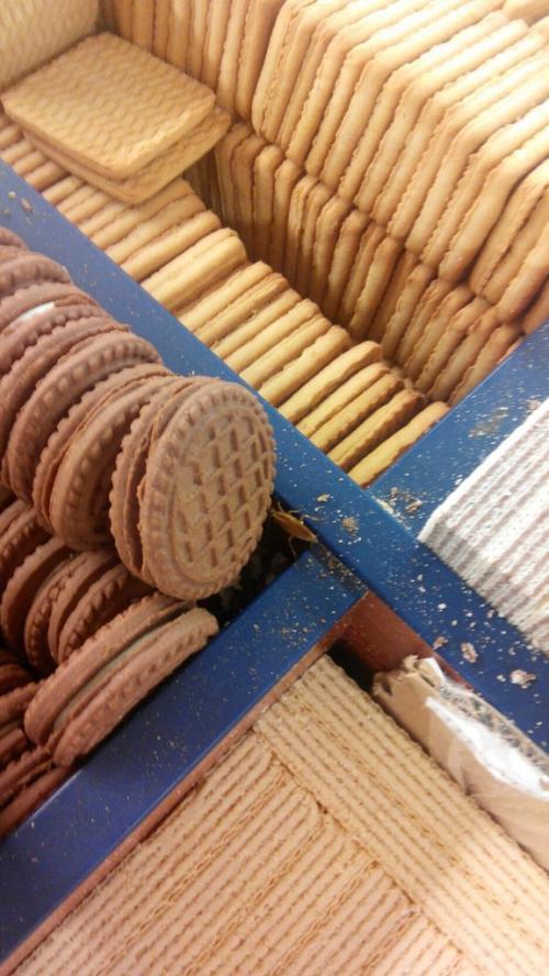 У черкаському магазині продають печиво із тарганами