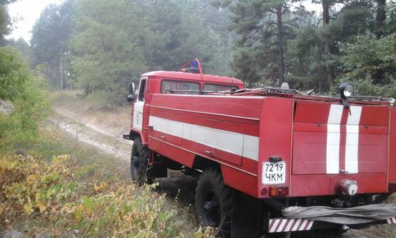 Рятувальники загасили пожежу у лісі на Канівщині
