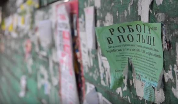 Робота в Польщі: як черкащанам не втрапити в пастку шахраїв (ВІДЕО)