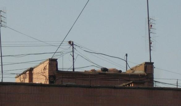 Відпочинок у Черкасах: чоловік приліг позасмагати на даху (ФОТО)