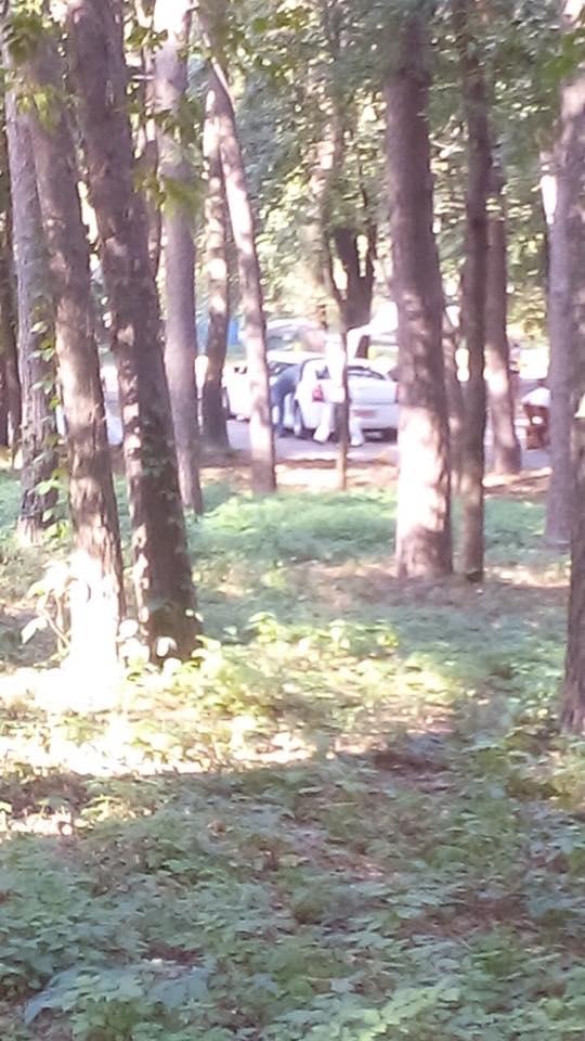 Нахабні водії чи зухвалі охоронці: чому черкаським парком їздять авто?