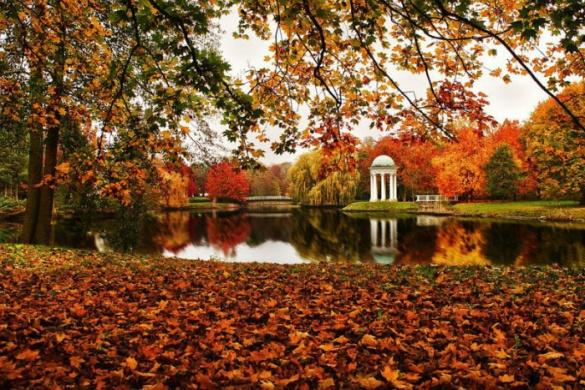 Парк на Черкащині опинився серед ідеальних місць для осіннього відпочинку