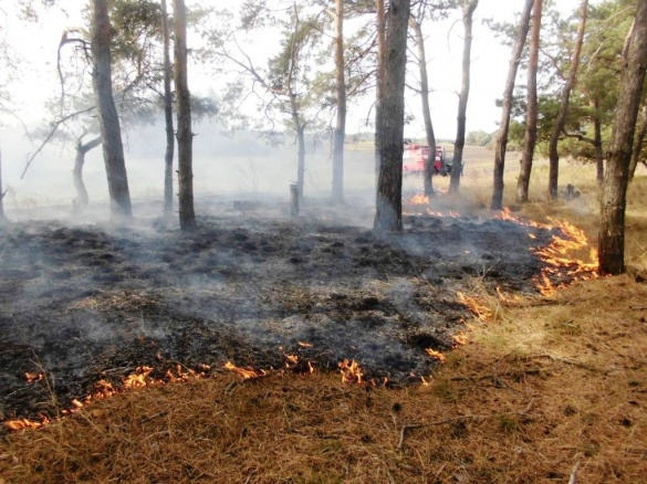 Черкаські рятувальники борються з масовими пожежами на полях