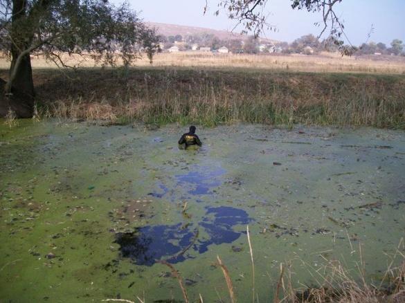 На Черкащині в річці знайшли тіла двох молодиків