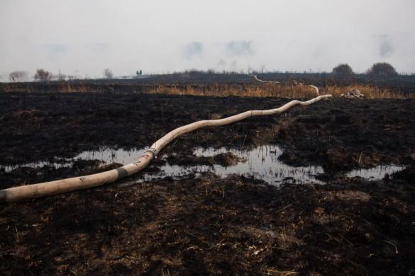Черкаські рятувальники борються з пожежами на київських торфовищах
