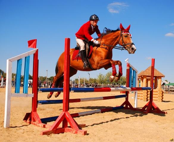 На Черкащині відбудуться видовищні долання перешкод на конях