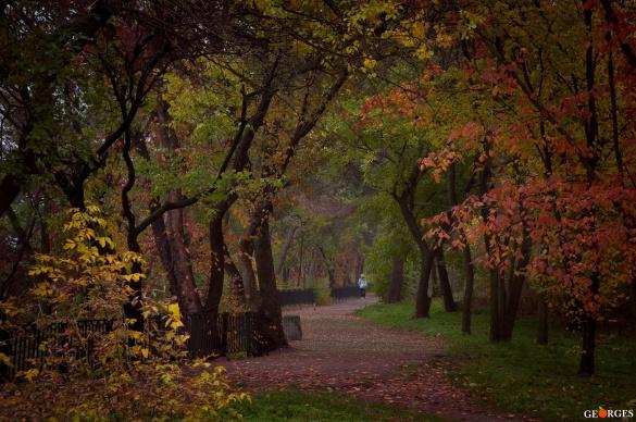 У мережі з'явилися фото Ювілейного парку восени