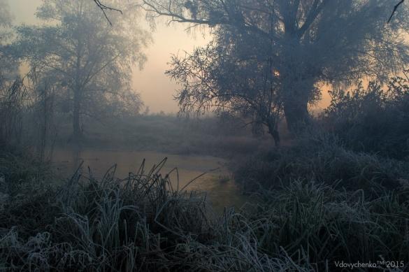 У мережі з'явилися моторошні фото ранку на Черкащині