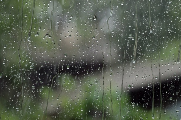 Дощі, тепло і тумани: погода на Черкащині буде мінливою