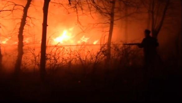 На Черкащині вогонь знищив 60 тонн соломи (ВІДЕО)