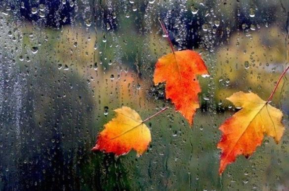 Черкаські синоптики констатують на диво теплу осінь