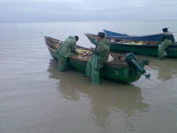 На Черкащині рибінспектори сітками ловлять рибу в заповіднику