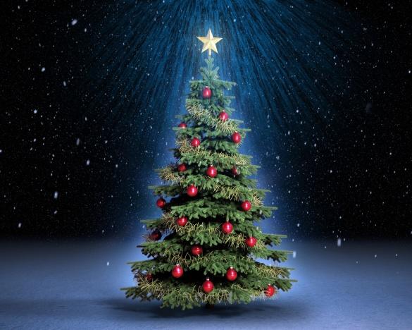 У Черкасах до новорічних свят встановлять 7 ялинок