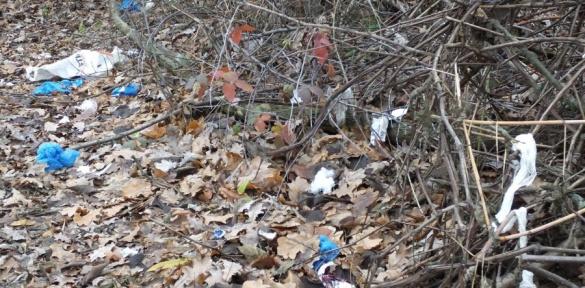 Черкаську обласну лікарню закидали сміттям (ВІДЕО)