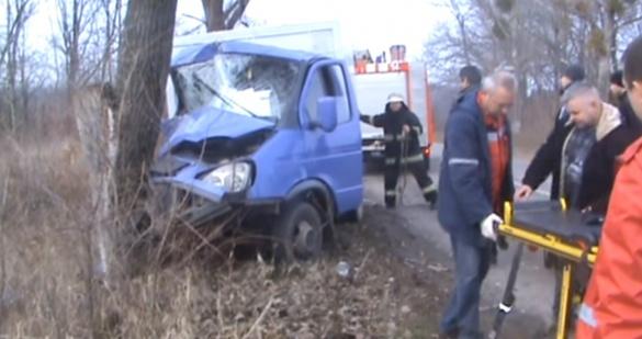 На Черкащині внаслідок ДТП авто розбилось об дерево (ВІДЕО)
