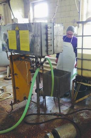 Черкащанин на власні сироварні виготовляє італійські сири