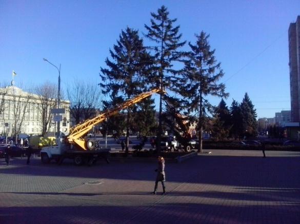 Біля Черкаської міської ради прикрашають ялинку
