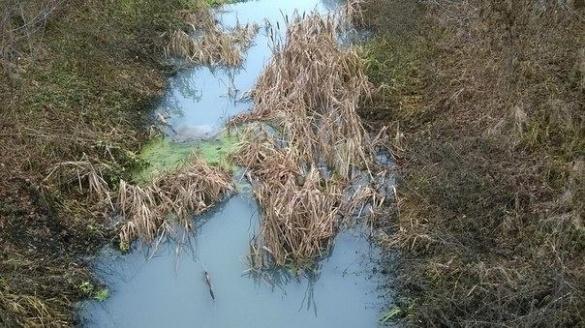 У забрудненні річки Суха Згар екологи звинувачують золотоніський
