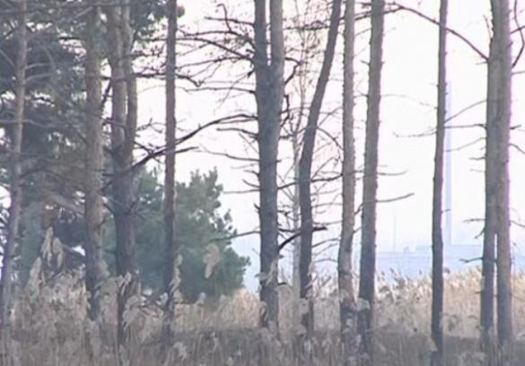 На Черкащині під загрозою зникнення – курортна зона (ВІДЕО)