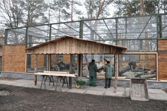 У черкаському зоопарку для леопарда та рисей збудували нові вольєри (ФОТО)