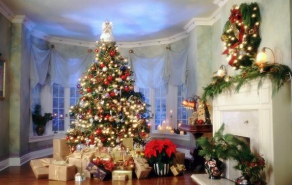 Черкащани визначили найкращу новорічну ялинку (ФОТО)