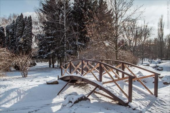 Черкащани милуються фотографіями засніженого парку