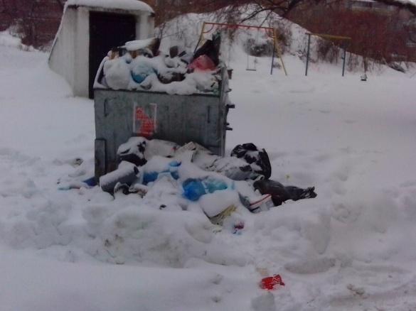 У деяких дворах Черкас сміття не вивозять через ризик загрузнути у снігу