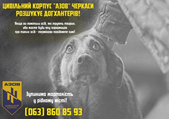 Черкащани шукають людей, які почали на вулицях труїти собак