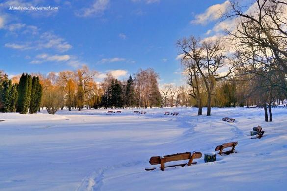 Черкаський парк після снігопаду очима фотографа