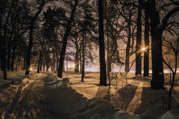 Черкаський фотограф показав красу вечірнього засніженого парку