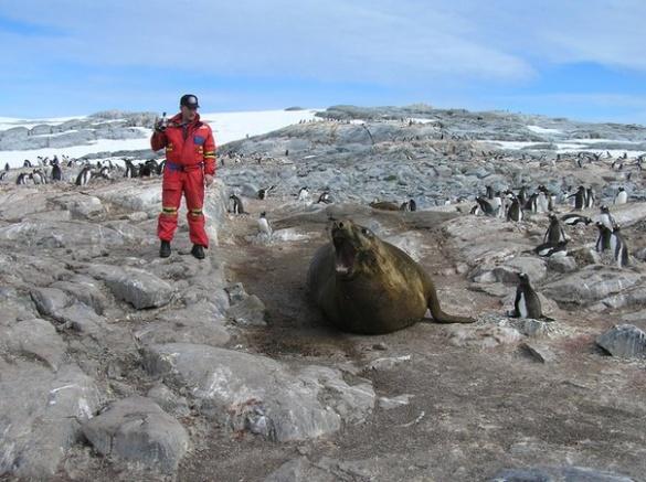 Черкащанин зустрічався із Біллом Гейтсом та гладив морських котиків і тюленів