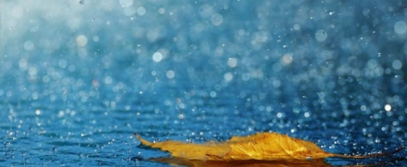 Черкащанам рекомендують брати на прогулянку парасольку