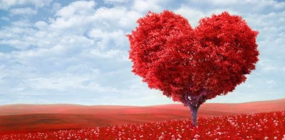 Як черкасці відзначатимуть День закоханих разом із другою половинкою?