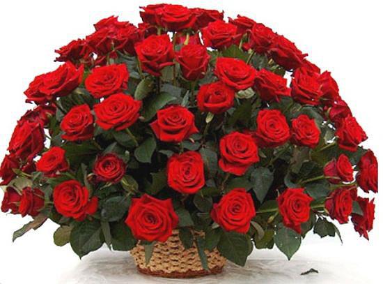 Cкільки до Дня Святого Валентина коштуватимуть квіти?