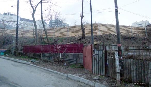 Чиновник пояснив, чому в центрі Черкас вирубують дерева