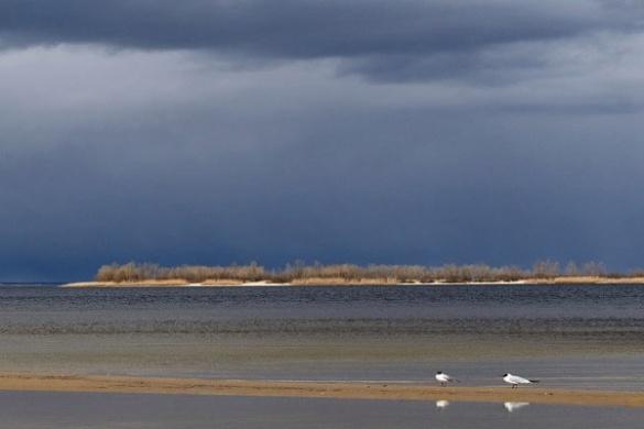 У мережі розмістили заворожуючі світлини набережної Черкас (ФОТО)