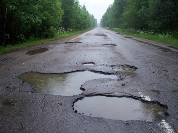 На Черкащині прямо на дорозі активісти посадили дерево (ВІДЕО)