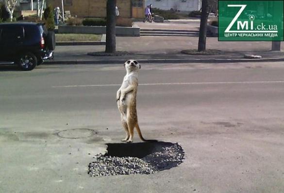 У мережі продовжують глузувати із черкаських доріг (фотожаби)
