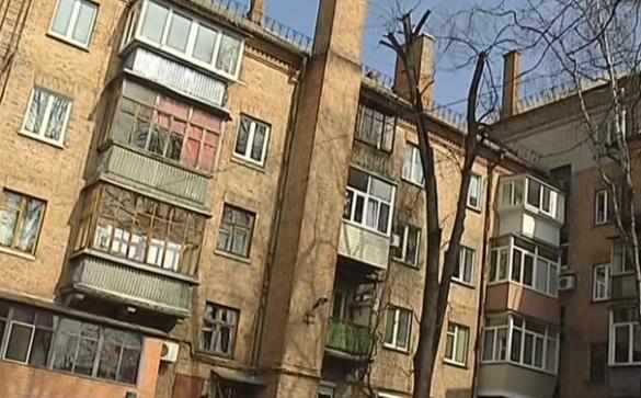 У черкаській квартирі господар утримує з десяток собак (ВІДЕО)