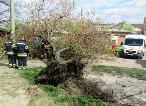 У Черкасах рятувальники усувають наслідки негоди (ФОТО)