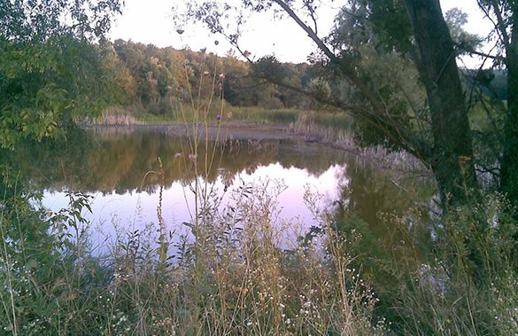 Неймовірні села України: Чубівка із Черкаської області