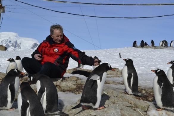 Черкащанин поїде у Антарктиду, щоб вивчати пінгвінів