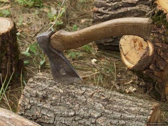 Заборона вирубки лісу може обернутися суттєвою проблемою для черкащан
