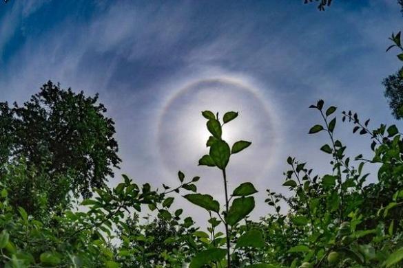 Черкащани мали змогу побачити сонячне гало (ФОТО)
