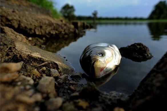На Черкащині виявили воду з отруйними речовинами