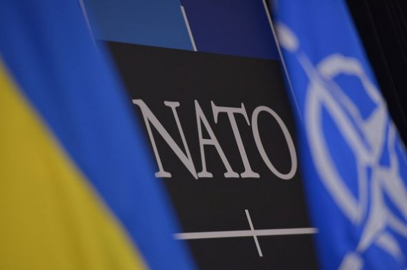 Один із черкаських вишів співпрацює з НАТО