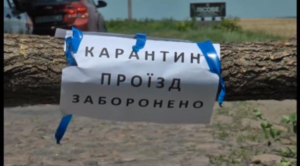 Спалах африканської чуми на Черкащині: страшна небезпека чи фальсифікація? (ВІДЕО)