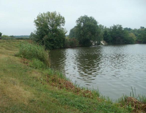 На Черкащині у ставку втопилася 16-річна дівчина